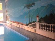 Ландшафтный дизай,  интерьер,  роспись стен. Продажа  картин.